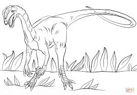 Small Picture Jurassic Park Dilophosaurus coloring page Free Printable