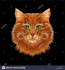 Eye Cat Design Red Orange Striped Cat Green Eyes Face Head Embroidery