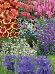 expandable border garden bluestone