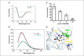 S glutathionylation Disulfide Stress–induced Of Protein Nitrosative waqvHzz