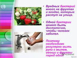 Презентация на тему Бактерии польза или вред Выполнила  19 Вредных