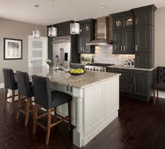 Narrow Kitchen Island Long Narrow Kitchen Island Kitchen Transitional With Island