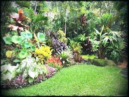 interesting tropical landscape ideas garden design for small spaces landscapes cool landscaping backyard outdoor
