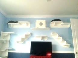 cat wall diy kids climbing wall cat climbing wall cat wall climbing shelves play kids room
