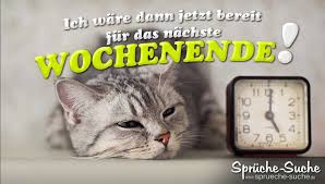 Wochenende Sprüche Spruchbild Müde Katze Sprüche Suche