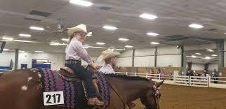 Myra Crawford Show Horses - Videos | Facebook