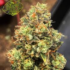 special weed