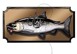 Image result for snagging for fish pics