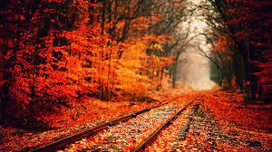 Autumn Hd Wallpapers on WallpaperSafari
