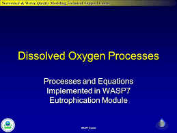 1 watershed water quality modeling technical support center wasp7 course dissolved oxygen processes processes and equations implemented in wasp7