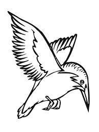 Vliegende Ijsvogel Kleurplaat Gratis Kleurplaten Printen