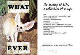 the meaning of life a collection of multimedia essays le tender  the meaning of life a collection of multimedia essays le tender sigh