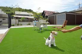 ワンちゃんと過ごす人工芝ZEROターフの庭 | ガーデン デザイン, ドッグラン 庭, ペット