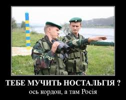 """Легендарный Арни поздравил украинцев с победой: """"Мои мысли с вами в то время, когда вы определяете свое будущее"""" - Цензор.НЕТ 8739"""
