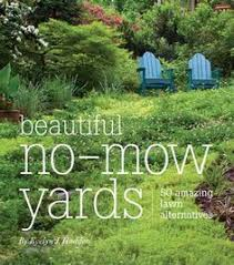 dog friendly ground cover. Beautiful Cover Xeriscape Dog Friendly Backyard  Yahoo Image Search Results With Dog Friendly Ground Cover E