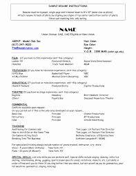 Harvard Job Resume Professional Resume Templates