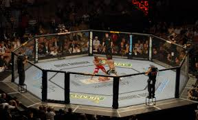 List of UFC events - Wikipedia