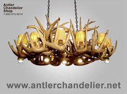 real antler dining pool table white tail chandelier arizwt