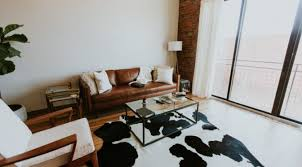 how to choose an area rug size color pattern maintenance pet my carpet