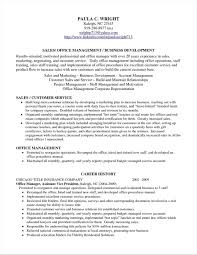 Professional Profile Resume Examples Teacher Bullionbasis Com