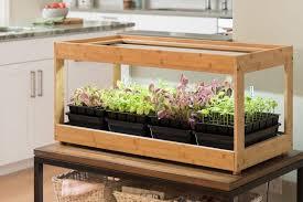 how to grow an indoor herb garden 2019