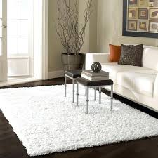 pretty living room floor rugs white area with dark hardwood flooring for large soft rug sizes super soft area rug