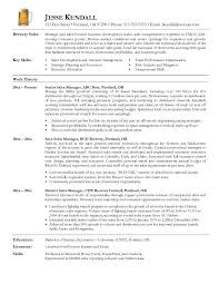 Executive Resume Examples And Samples Resume Headline Sample Sale  Representative Resume Resume For Beer Sales Rep