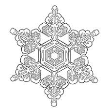 Snowflake Bullet Point Top 20 Snowflake Coloring Pages For Your Little Ones