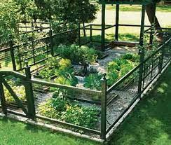backyard gardens diy garden fence