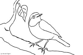 heimische Vögel Archive - Naturstrolche
