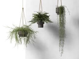 ... hanging pots with plants 3d model max obj c4d 2 ...