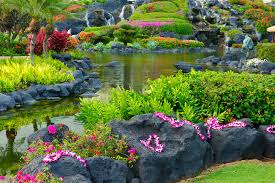 tropical paradise the grounds of the grand hyatt in poipu kauai with flowers