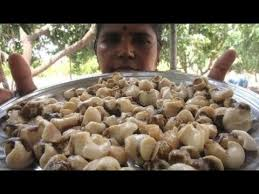 Great Cocinar Receta De Caracol De Mar En Mi Pueblo | Receta De Sabor Diferente |  Comida Del Pueblo