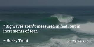 Waves Quotes Inspiration Surf Quotes SurfCareers