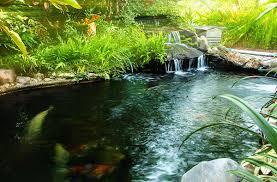 Natural Swimming Pools in the Albany Plattsburgh Burlington VT areas