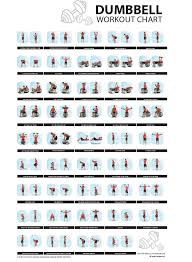 Dumbbell Workout Chart By Fitness Concept Docshare Tips