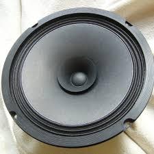 visaton bg 20 full range speaker driver