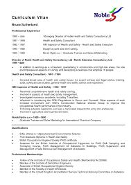 Cv Resume Template Nz Fungram Essay On Fire Com