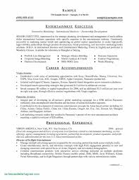 Executive Classic Format Resume Free Downloads Executive Resume