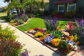 Drought Tolerant Front Yard Landscape Design Front Yard Landscaping Ideas For Curb Appeal Houselogic