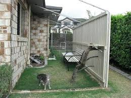 large cat enclosure enclosures outdoors uk learn how to build a see run