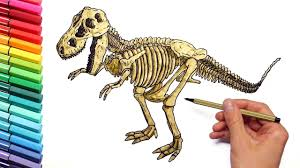 Dinosaur Skeleton Color Pages For Childrens Drawing And Coloring T