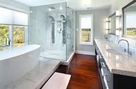 spray shower heads transitional bathroom also bathtub sprays freestanding glass enclosure light gray walls marble
