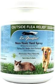will diatomaceous earth kill ticks will earth kill ticks d earth for fleas outside flea relief