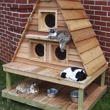 4 cat mansion made from wood pallets give feral cats an outdoor