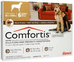 comfortis for dogs comfortis dogs r87