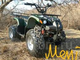 Квадроцикл 4х2 - Yamaha Grizzly, 2019 - Продажа квадроциклов ...