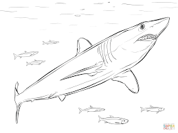 shortfin mako shark easy great white shark coloring pages