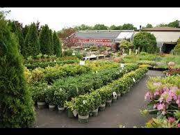 garden nurseries near me. Plant Nursery - Near Me Jobs Garden Nurseries T