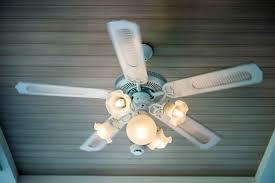 light bulb for your ceiling fan